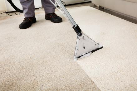 carpet cleaning bloomington il